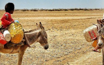 América Latina y el Caribe en defensa del agua